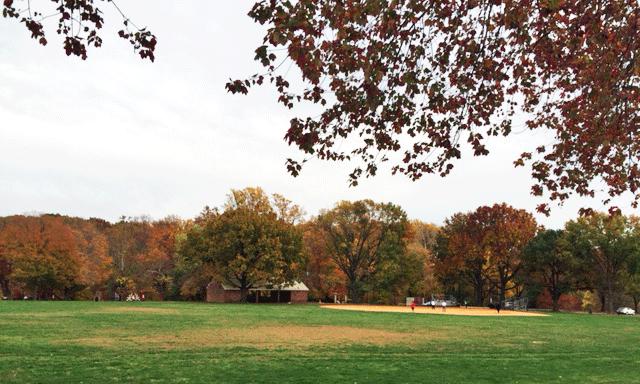 woodley-gardens-park